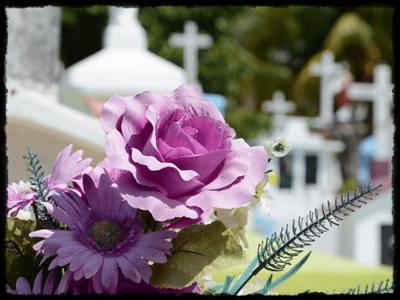 Кремация 1